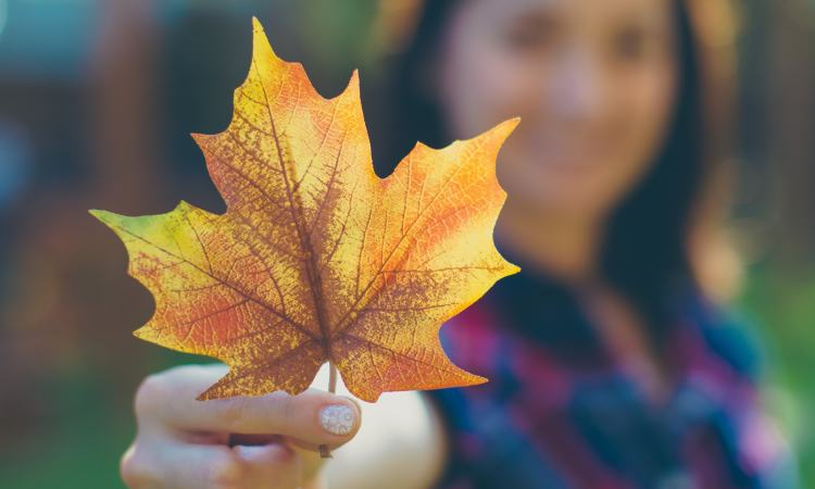 A Culture of Distorted Gratitude