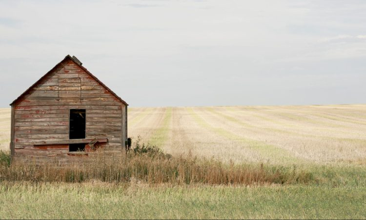 Fixer Upper and totalitarianism