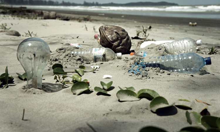 Plastic water pollution. Sustainable tips to live a sustainable life. Image Credit: epSos.de / Wikimedia Commons