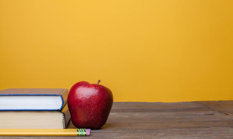 Pray for Christian teachers (credit: lightstock.com)