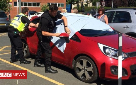 102204364 dogcar1 censored 1 - York police rescue dogs from 'blazing hot' car
