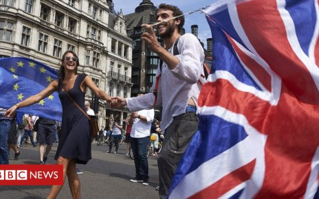 102191788 gettyimages 982055032 - What kind of Brexit do voters want?