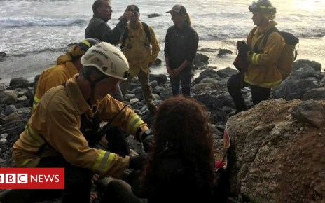 102533056 mediaitem102533055 - US woman rescued a week after California cliff plunge
