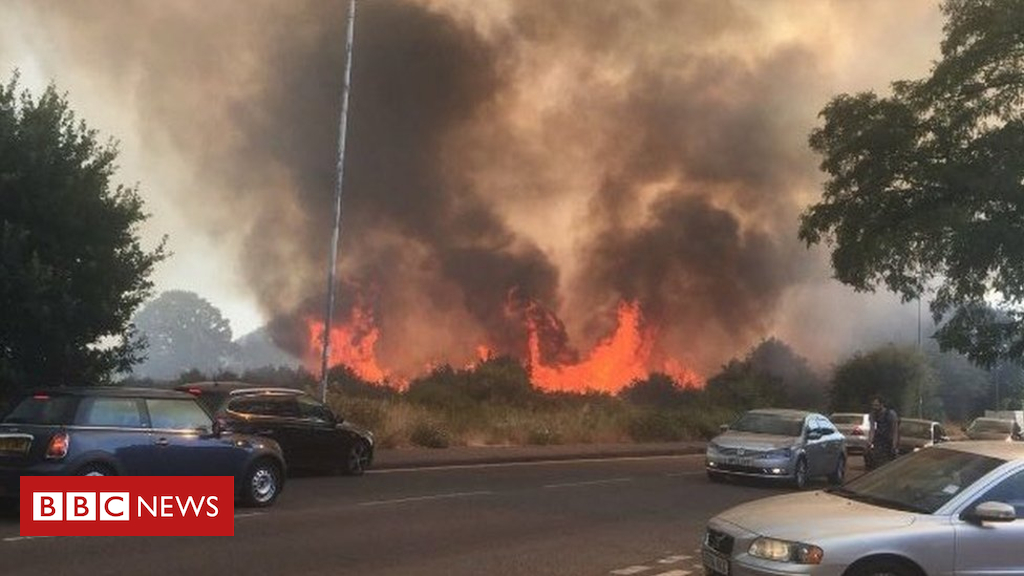 102534904 11 - Large grass fire breaks out on Wanstead Flats