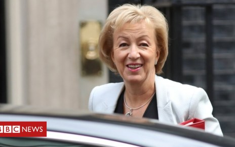 102612126 leadsom reuters - Brexit: Tell EU the Chequers plan is final offer, says Leadsom