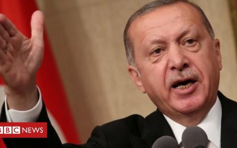 102961307 erdogan - Lira crisis: Turkey to boycott US electronic goods over sanctions
