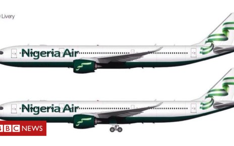 102580813 dizbhblxkaal68f - 'Nigeria Air' national airline plans put on hold
