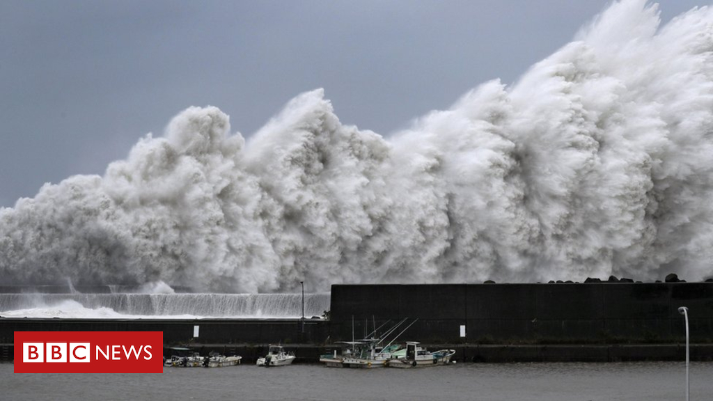 103283598 acd301fd 2673 43d4 bdb3 f67a85c8133e - Japan hit by strongest typhoon in 25 years