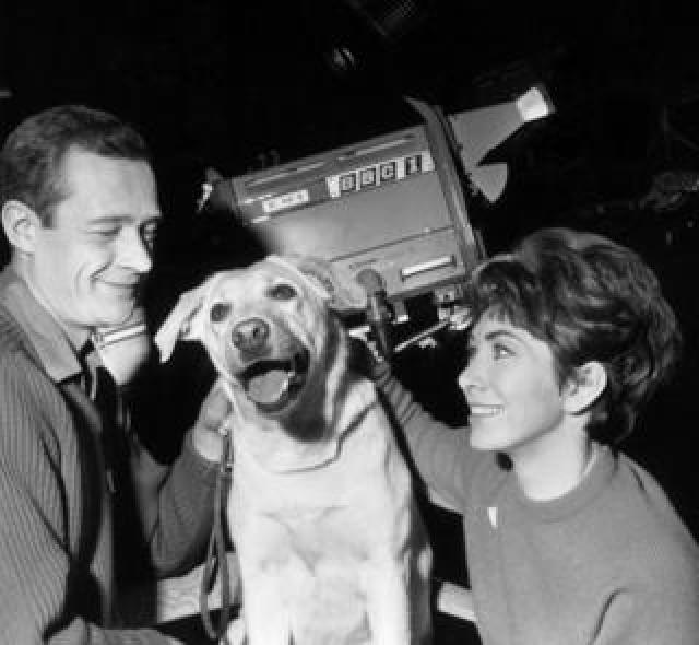Honey the dog with presenters Christopher Trace and Valerie Singleton.
