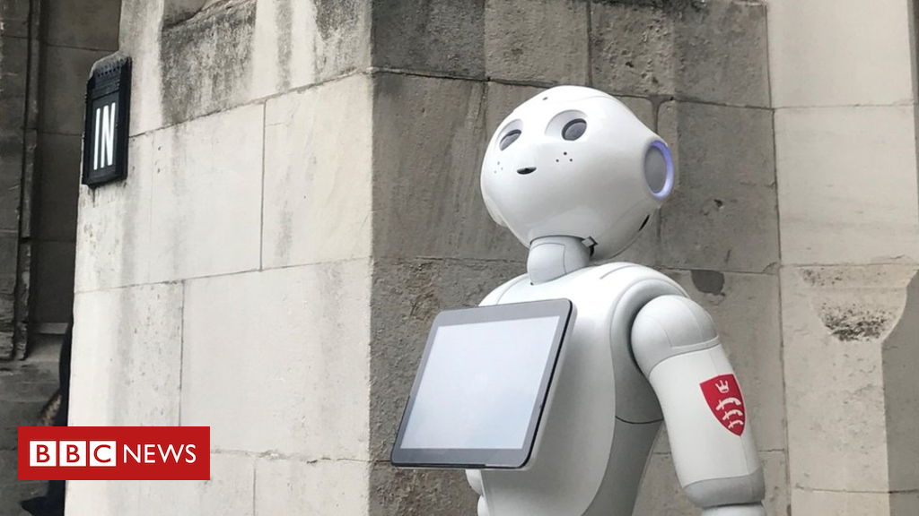 103807828 pepper - Take me to your leader! MPs to quiz robot