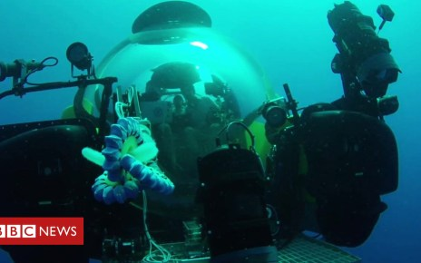 104042791 p06pyb7z - The robot arm made for gentle undersea exploration