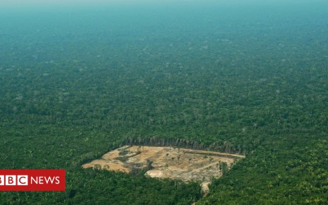 104104896 gettyimages 861414508 - Is the Amazon facing new dangers?