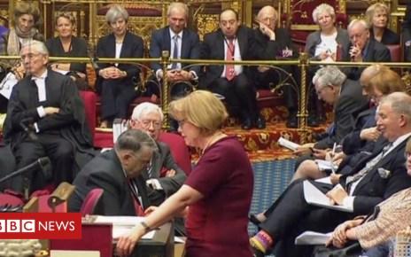 98550609 mediaitem98550602 - House of Lords 'is shrinking', say peers