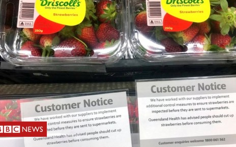 104264067 strawberries - Australia strawberry scare: Woman arrested in Queensland