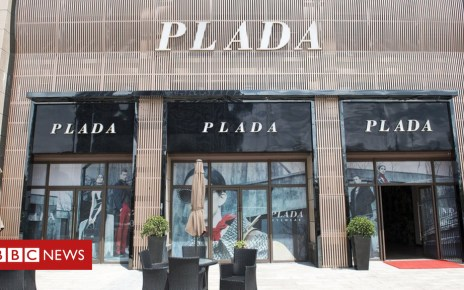 104356836 zig 8464 - Would you buy a handbag from Plada or Loius Vuitton?