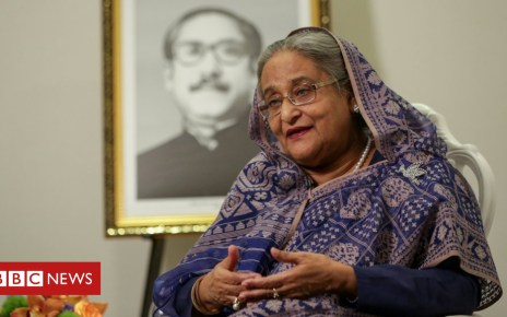 104388837 mediaitem104388836 - Sheikh Hasina: Lawsuit threat over Bangladesh PM 'tail' error