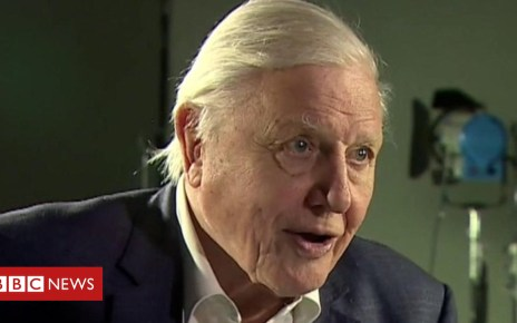 104436361 p06sg53y - David Attenborough: Climate 'biggest threat in thousands of years'