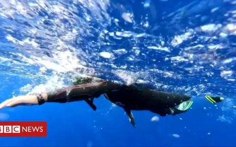 104508368 swimmer - Ben Lecomte: Swimmer abandons attempt to swim Pacific