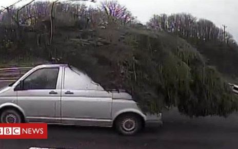 104626975 tree - Giant Christmas tree on van caught on A38 police camera