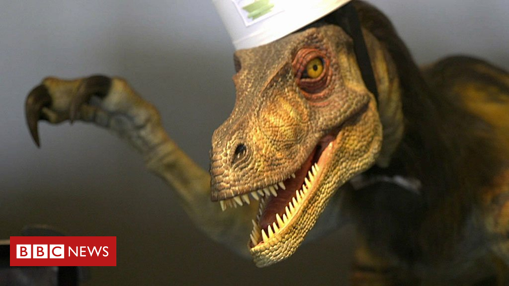 105217232 p06ycnqn - Robot dinosaur sacked and other technology news