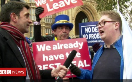 105244282 mediaitem105244281 - Brexit protests: Testing the atmosphere on College Green
