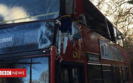 105704822 0762a648 a19a 4f95 8af2 9f9f6992a554 - Two hurt as rail replacement bus hits tree near Brighton