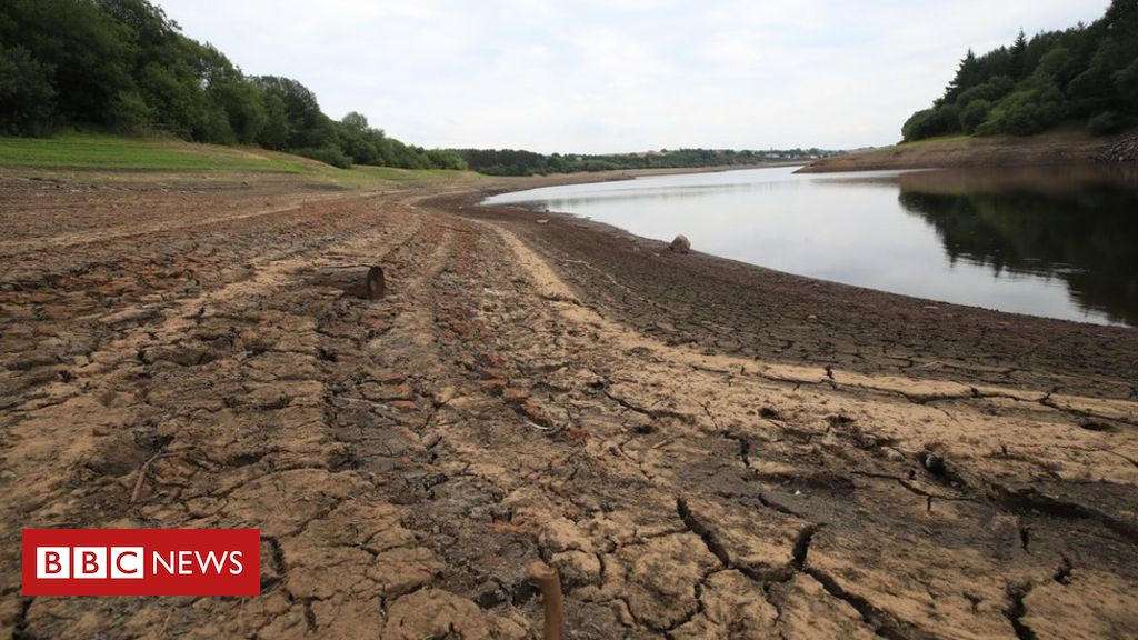 102554102 mediaitem102554101 - Climate change: Water shortages in England 'within 25 years'