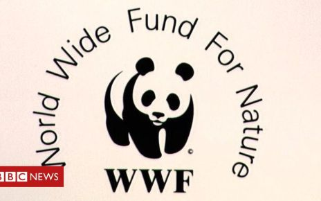105886414 mediaitem105886410 - WWF accused of funding guards who torture and kill in poaching war