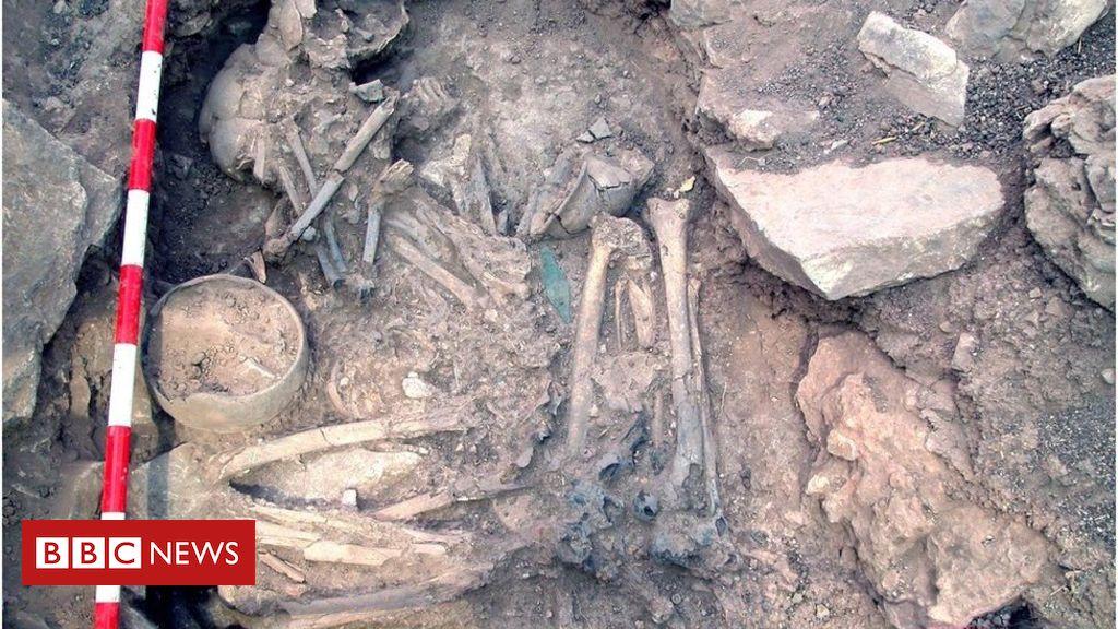 106031040 olalde3hr - Wandering males transformed Spain's DNA