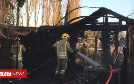 106166084 fire - Gentleshaw Wildlife Centre fire kills tortoises and meerkat