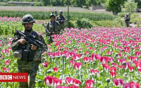 106598775 soldiers 976alamy - How the US military's opium war in Afghanistan was lost