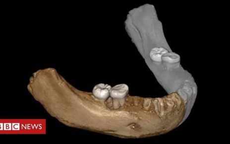 106753160 mediaitem106753159 - Denisovans: Primitive humans lived at high altitudes