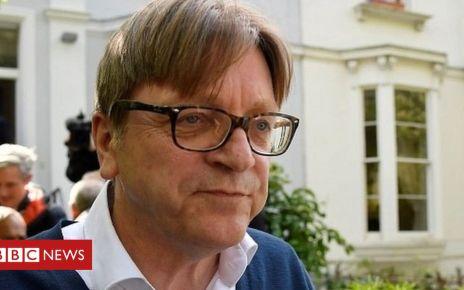 106907700 mediaitem106907697 - Verhofstadt: I don't know if Brexit will happen
