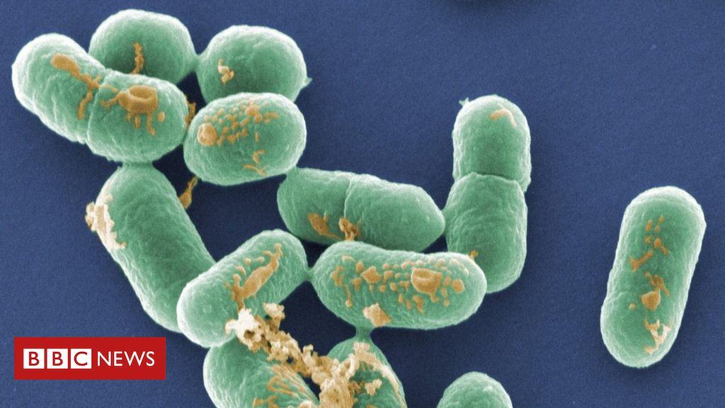 100271158 mediaitem100271155 - Hospital patients die in sandwich listeria outbreak