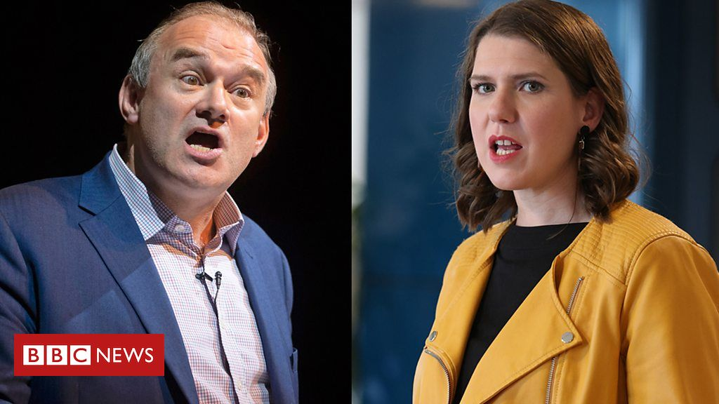 107838128 p07gmmgn - Lib Dem hopefuls on how they can appeal to Leave voters