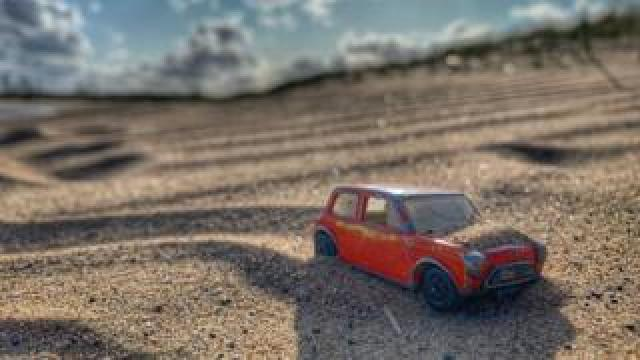 George the Mini enjoys the sand at Seaton Dunes and Common, Hartlepool