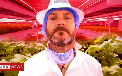 108380481 p07kwn05 - Does the future of farming exist beneath city streets?