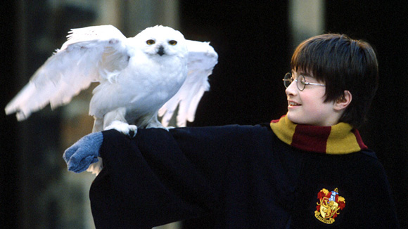 Harry Potter à l'école des sorciers (Chris Columbus)