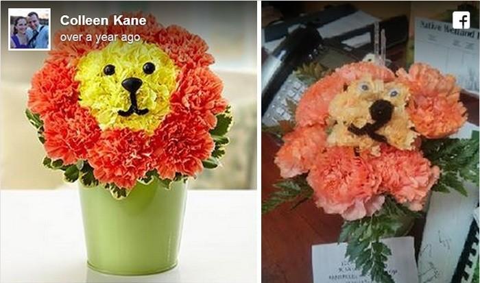 flor de leão