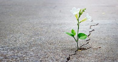 A força da esperança (e seu verdadeiro significado)