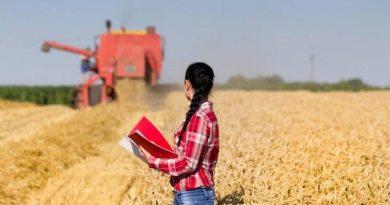 Mulheres assumem cada vez mais a gestão de propriedades rurais e levam tecnologia ao campo
