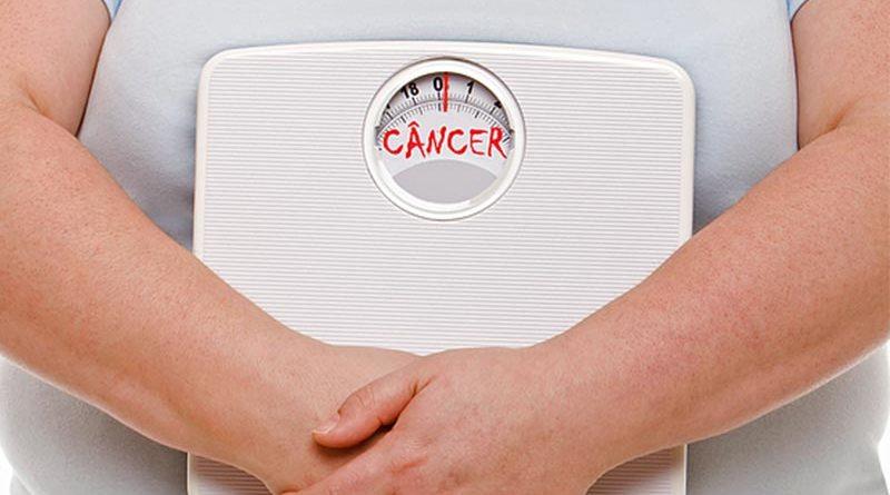 Relação do excesso de gordura corporal e o câncer