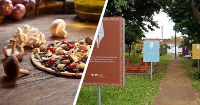 Bella Capri, Café Du Chef, cidades mais arborizadas, A Poesia de Portinari, Chá gelado e Jet Ion