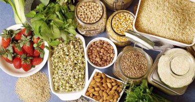 A importância da inclusão das fibras na alimentação