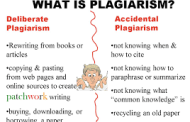 5 Deadly Revelations from the Plagiarism Scandal in the Nigerian Presidency