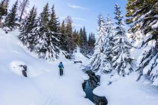 _DEST_ROMANIA_CARPATHIA_THEME_SKIING_shutterstock_1014443614.jpg_KAYAK_Within usage period_31562