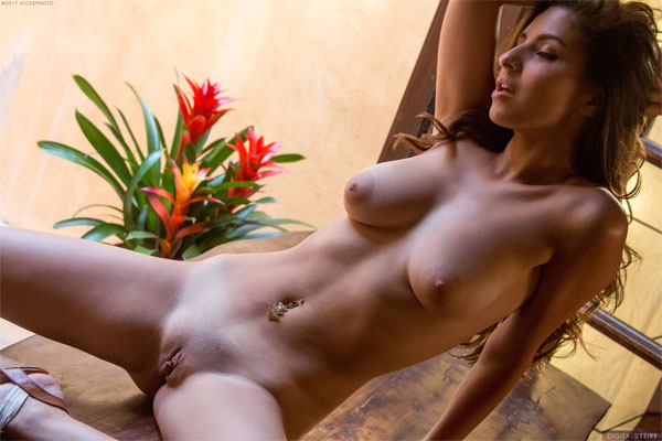 Nina North - Porn