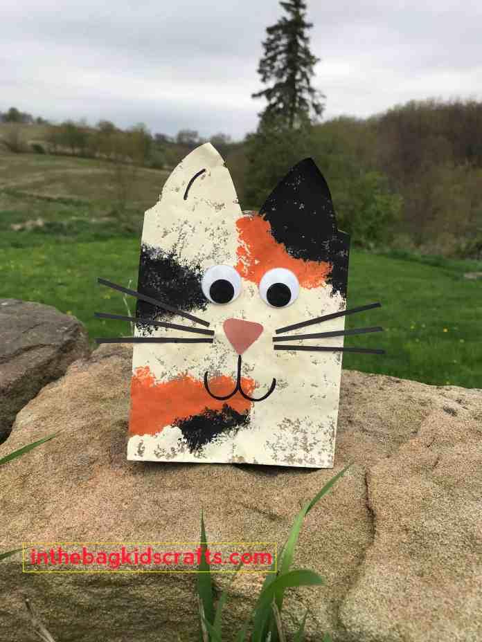 Cat Gift Bag Easy Kids' Craft