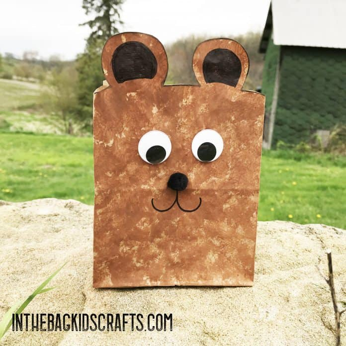 teddy bear gift bag