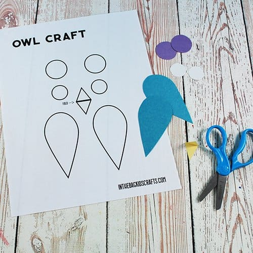 OWL CRAFT TEMPLATE STEP 3